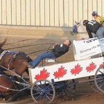 Stop The Horrific Chuckwagon Race & Calf Roping Events At The Calgary Stampede!